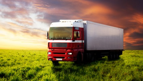 Freight truck in the field of green grass