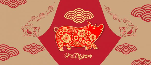 Happy new year 2019. Chinese lunar new year greetings, Year of the pig image - Freightera